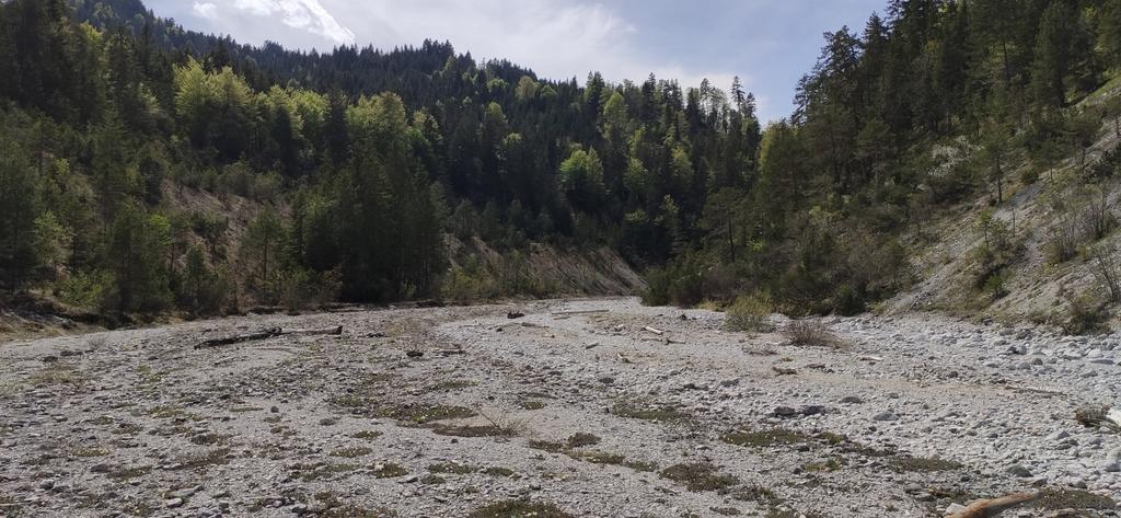 Fischbachableitung - Fischbach unterhalb des Stauwehrs